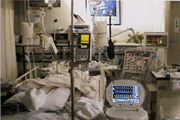 高度救命救急センター  中央部...